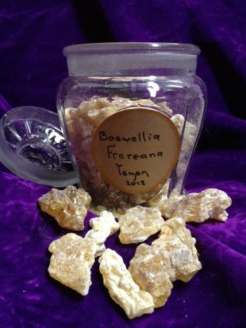 Boswellia, Frankincense Frereana. Called Yeminite chewing gum.