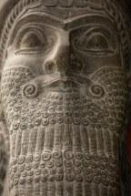 Sumerian Beard Grooming