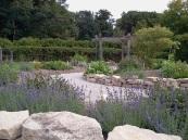 Apothecary's Garden Churchill Park Hamilton