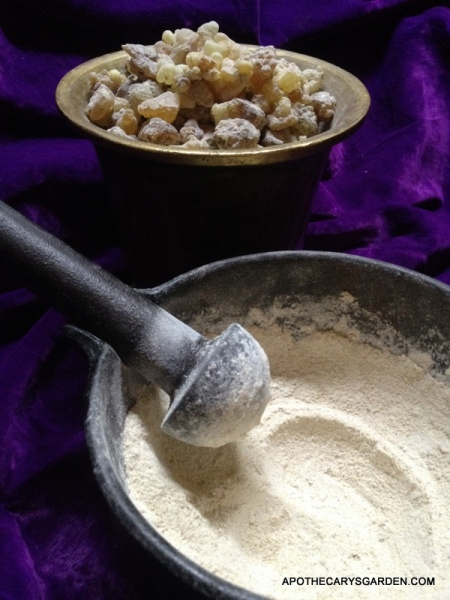 Frankincense Papyrifera ground in a steel mortar in preparation for extraction.
