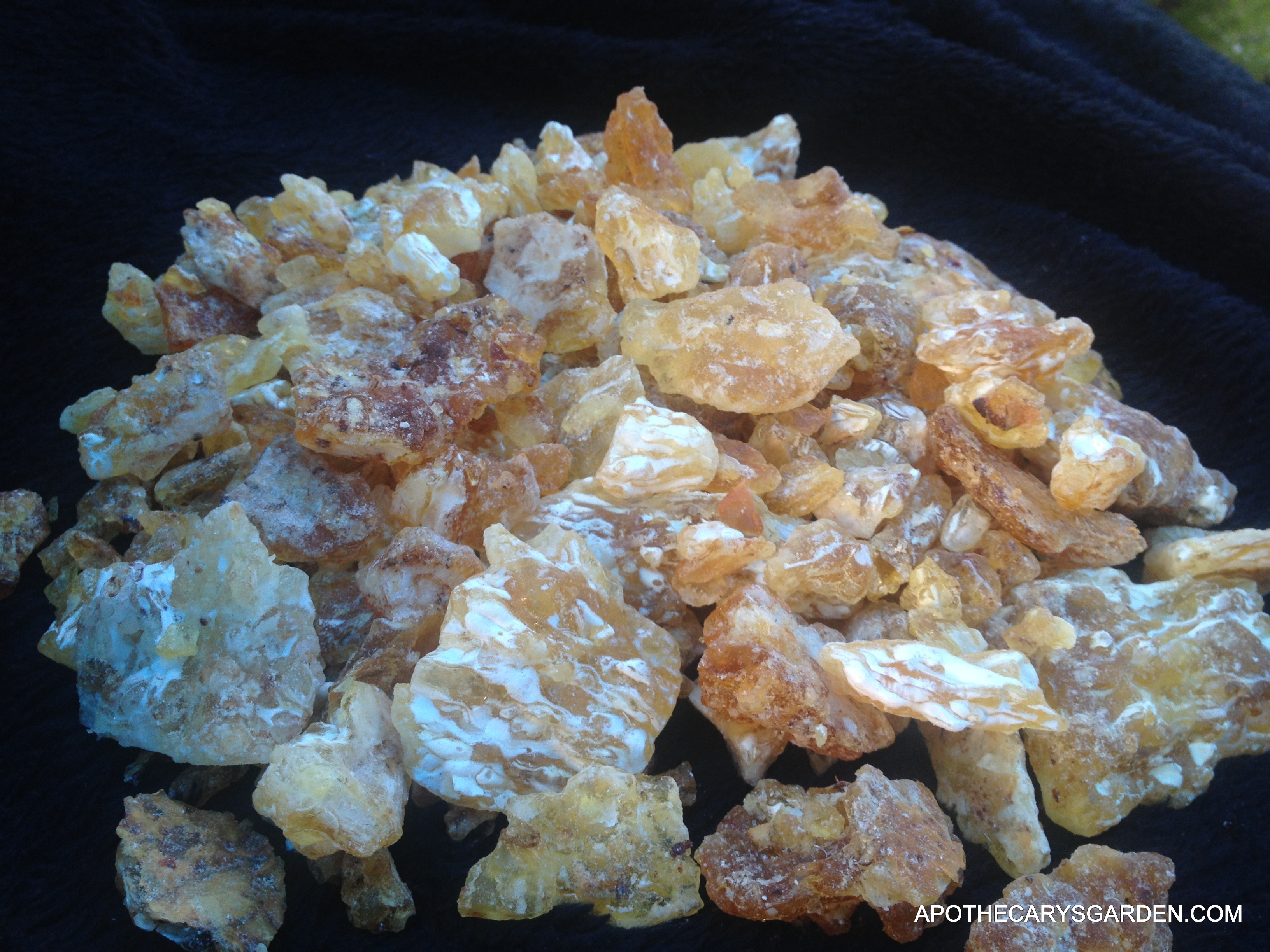 how to make frankincense water