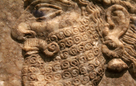 BabylonianBeard Wax