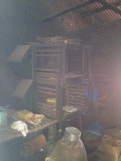 Current living conditions for Civets are not a great improvement, but a place to start.