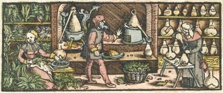 Distillation Woodcut